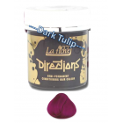 Directions: Hair Colour - Dark Tulip 88ml