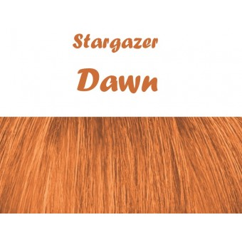 Stargazer: Semi Perm Hair Dye - Dawn
